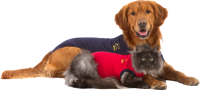Medical Pet Shirt (MPS) | Schutz Body
